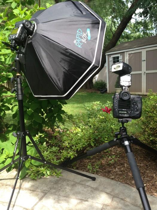 ©TimeLine Media - Rapid Box setup for flower shoot