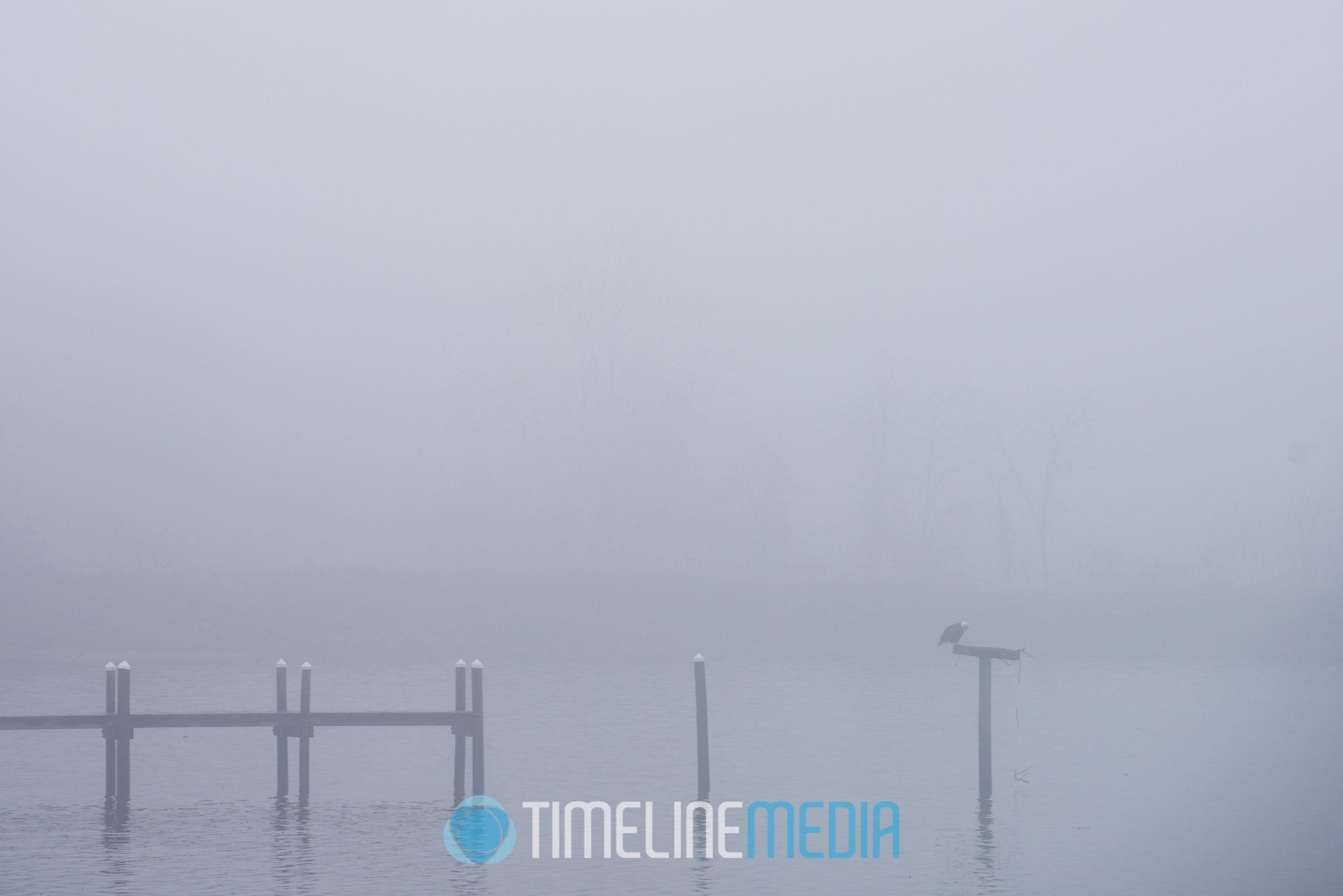 End of pier over a foggy river ©TimeLine Media