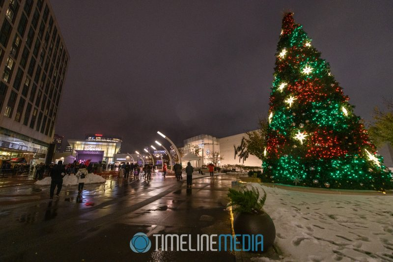 Lit Christmas Tree on the Plaza at Tysons Corner Center