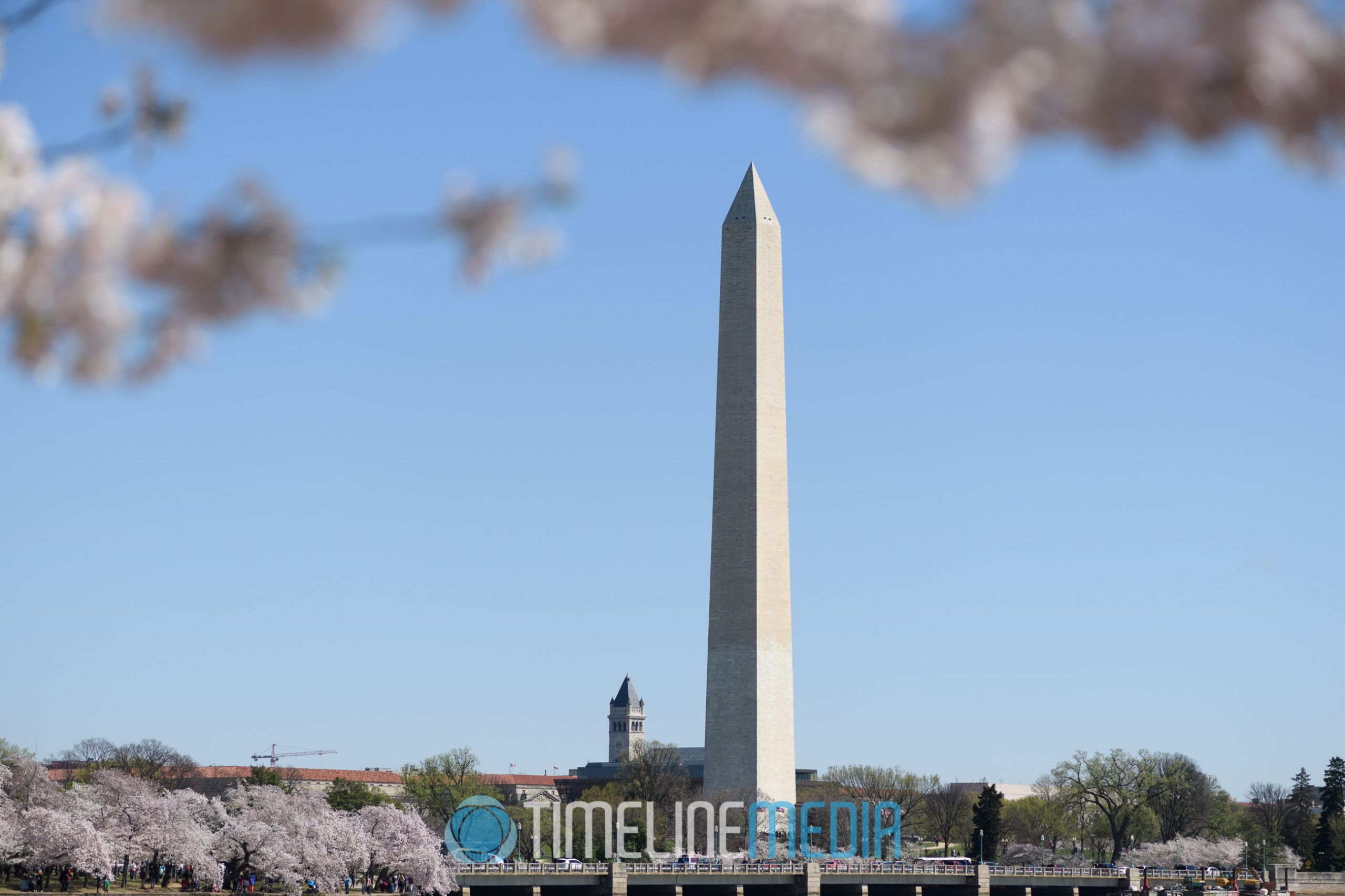 2016 Cherry Blossoms and the Washington Monument ©TimeLine Media