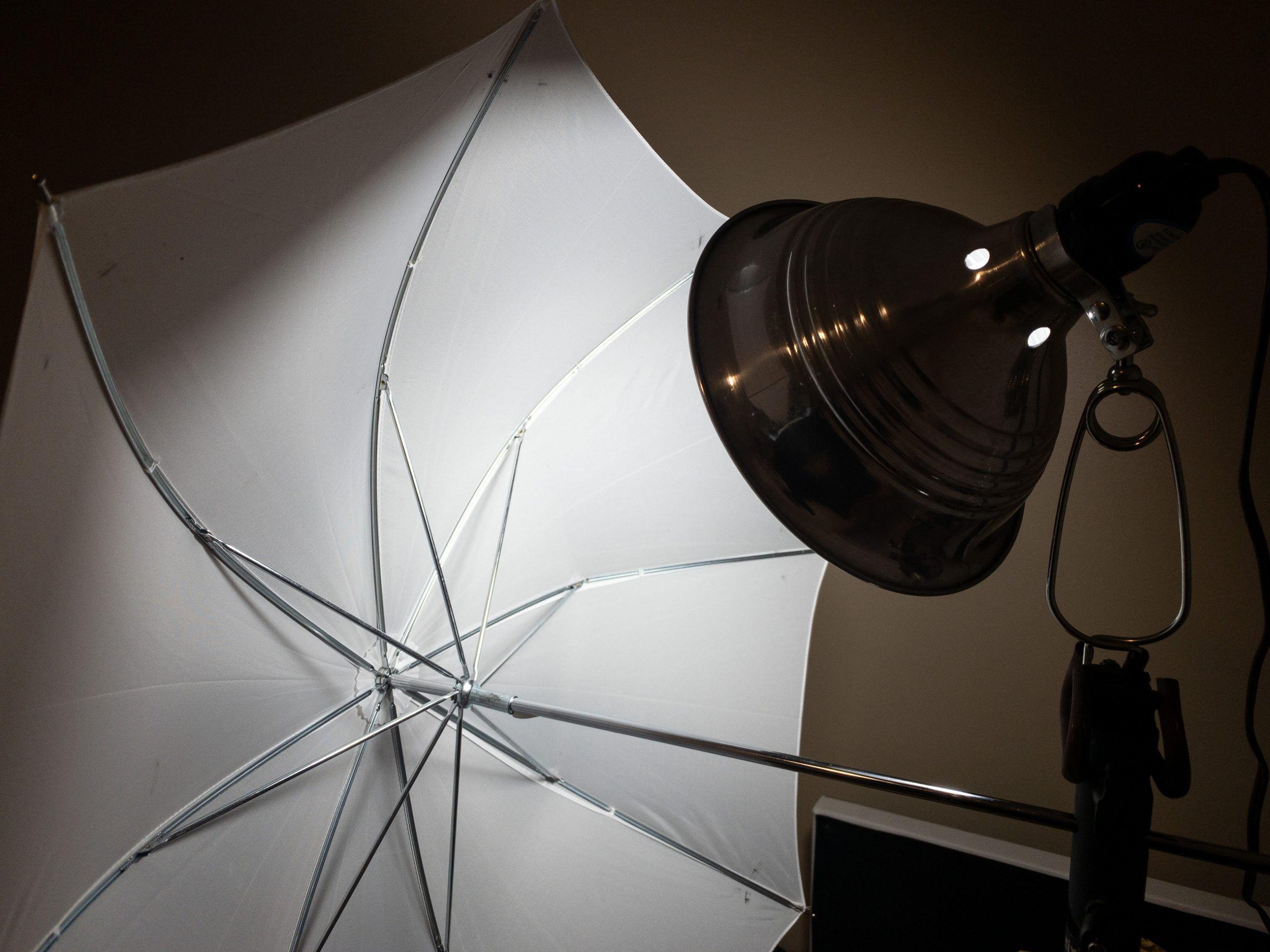 Shop Light firing into an umbrella