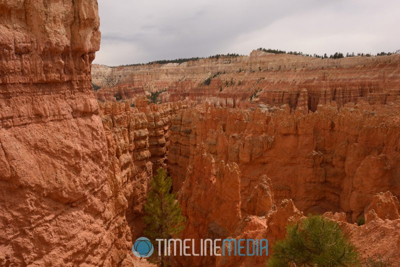 Irregular spikes of eroded rock named 'hoodoos' from the canyon rim ©TimeLine Media